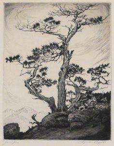 "Artist: Lyman Byxbe (1886-1980). Title: Junipers.   Description: Etching 7"" x 5 1/2."