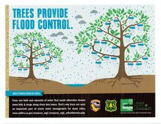 With all the rain this week, did you know that trees provide flood control? That's because trees can hold vast amounts of water. Learn more about trees at http://calfire.ca.gov/resource_mgt/resource_mgt_urbanforestry.php