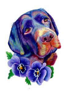 Rainbow Drawing, Rainbow Art, Rainbow Bridge, Multicoloured Art, Rainbow Photography, Rainbow Wallpaper, Dog Paintings, Art Watercolour, Pet Portraits
