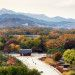 Autumn colors of Jongmyo Shrine, seen from the... | Robert Koehler Travel Photography