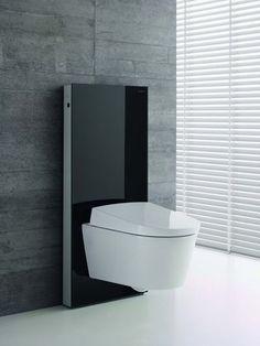 WC design avec panneau en verre teinté noir