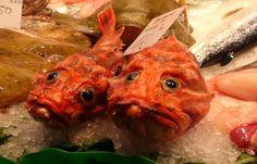 Free photo: Fish, Food, Red, Market, Sea - Free Image on Pixabay . Fried Fish, Fish Fry, Secret Recipe, Fish Recipes, Fries, Sea, Chicken, Food, Fishing