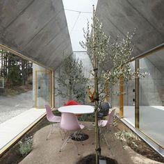 Eames Molded Side Chair (Eiffel Base)