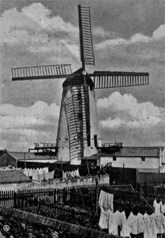 Higher Bebington mill in 1907 - Also referred to as Storeton Mill and Johnson's Mill in other photographs *shrug Liverpool Town, Cheshire England, New Brighton, Old Street, Local History, Nostalgia, Urban, River, Windmills