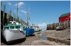 Hall's Harbour, Bay of Fundy at low tide