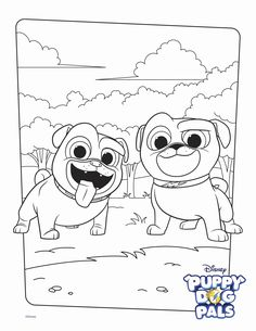 Bingo and Rolly Coloring Page Activity top Bingo and Rolly Coloring Pages Bingo and Rolly Coloring Page Activity. Bingo and rolly coloring pages. Free Printable Coloring Pages Color Happy Creations