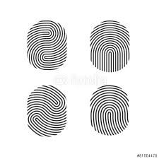 fingerprint graphic - Google Search