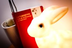 White Rabbit night light
