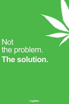 "Minimal poster with giant bud leaf and words ""Not the problem. The solution"" overlaid on colored background  #posters #marijuana http://budposters.com/"