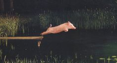 Ralph, the diving pig from San Marcos, TX