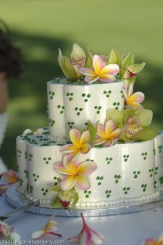 Little green on the wedding cake!   Photo by Tad Craig Photography