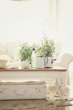 Country Rustic Home Decor + Beachy Decor + Vintage + White + Green + Shabby Cottage + Bungalow + Green + Enamel Pots + Neutral Living Room Beach Cottage Decor, Coastal Cottage, Cottage Chic, Cottage Style, Coastal Decor, Cottage Ideas, Coastal Style, Coastal Living, Old Coffee Tables