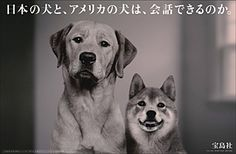 新聞広告賞2011|新聞広告データアーカイブ