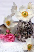 Anemonen im Silberglas, daneben rosa Rosen