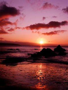 Saundersfoot, Wales, UK  Sunrise Rose (by Captain Nikon)