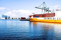 Import and Export Services Carnival Corporation, Sumo, International Waters, Freight Forwarder, Packers And Movers, State Of Florida, Surabaya, Pacific Ocean, Golden Gate Bridge