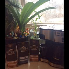 Delicious Melaleuca Mountain Cabin coffee - flavored coffees or plain - amazing any way you drink it. Even a flavored decaf which I love! ❤️ our whole kitchen smelled so good this morning - what a way to start our day!