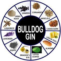 I remember when Bulldog was first launched in the UK; Gerry's in Old Compton Street had a display full of these unusual, smokey, purple-grey glass bottles. This was back in October 2006* and, since...