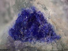 Meieranite, Na2Sr3MgSi6O17, Wessels mine, Kalahari Manganese Fields, Northern Cape Province, South Africa. Aggregates of granular blue crystals, associated with massive pale green sugilite, prismatic grey aegirine and bladed white pectolite.