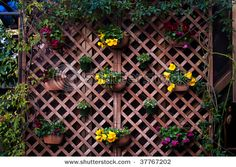 Wall Garden.  I'm thinking about doing this on the bottom part of my deck.