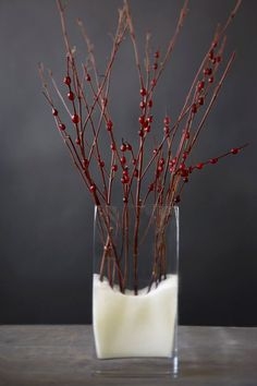 Spear fresh cranberries on dogwood branches, then display in a tall glass vase filled with coarse salt for a simple, elegant wintery look.