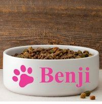 Personalized Colorful Classic Large Dog Bowl