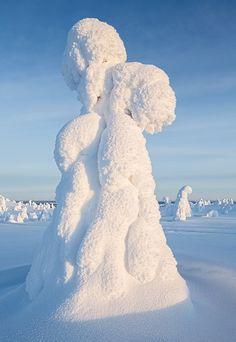 Nature art - North Pole