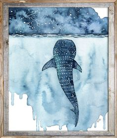 Watercolor Whale Shark Painting Print titled Stars