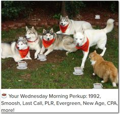☕ Your Wednesday Morning Perkup: 1992, Smoosh, Last Call, PLR, Evergreen, New Age, CPA, more!