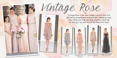 Vintage Rose Wedding Inspiration
