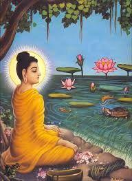 Resultado de imagem para livros budistas