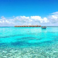 Maldives Luxury Resorts - Angaga Island Resort  #bmrtg #Maldives #TravelStoke #angaga #indianocean #AsiaTravel #WorldTravelGuide #LalumiTravels #warrenjc #sunnysideoflife #maldivity #travel #traveling #vacation #dive #surfing #adventureculture #instagood #india #holiday #lagoon #beach #instapassport #instatraveling #mytravelgram #travelgram #igtravel #CrystalClearWater #LonelyPlant #adventure