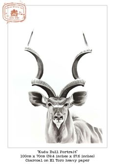 Stunning African Wildlife in Ink, Charcoal,