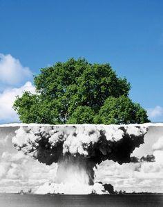 É preciso transformar o poluidor em salvador... Para o descarte adequado de seus resíduos, conte com nossa busca por postos em: www.ecycle.com.br/postos/reciclagem.php  www.eCycle.com.br Sua pegada mais leve.