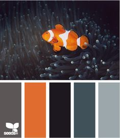"Mmm, neutrals plus orange?  Yes please!  These look like good colors for a quilt for a guy (especially that Kona just unveiled new grays...).    ""Aquatic Tones"""