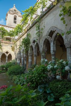~Beautiful Cloister Garden in Sorrento, Italy 2013 ~ Cloister of St. Francesco