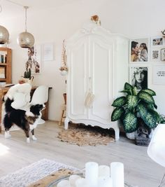 Bohemian interior with lots of white and plantlove by @lovedbysheila on instagram