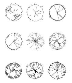 Tree symbol in plan- drawing architecture graphics, landscape architecture, architecture symbols, architecture Architecture Symbols, Architecture Site Plan, Landscape Architecture Drawing, Landscape Sketch, Landscape Design Plans, Architecture Graphics, Landscape Drawings, Architectural Trees, Symbol Drawing