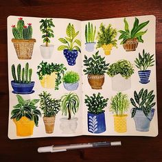 Houseplants • #cbdrawaday • Day 25 #creativebug #lisacongdon #sketch…