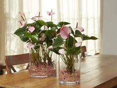 flamingóvirág üvegben Feng Shui, Glass Vase, Home Decor, Decoration Home, Room Decor, Home Interior Design, Home Decoration, Interior Design