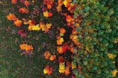 Aerial Drone Pictures of Landscapes
