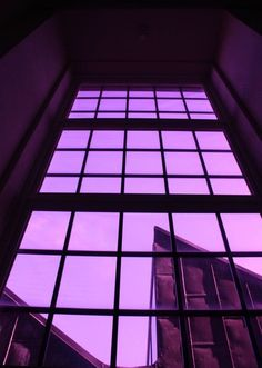 Purple aesthetic, violet aesthetic и lavender aesthetic. Dark Purple Aesthetic, Lavender Aesthetic, Violet Aesthetic, Rainbow Aesthetic, Aesthetic Colors, Aesthetic Pictures, Collage Mural, Bedroom Wall Collage, Photo Wall Collage