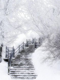 As pretty as this is, I would not want the job of clearing the steps.