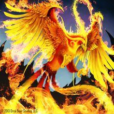 Fiery Phoenix - Keepers of Grimoire by SkavenZverov.deviantart.com on @deviantART