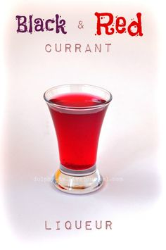 Best Raspberry Or Black Currant Liqueur Recipe on Pinterest