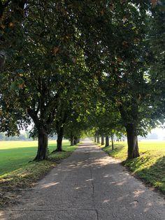 Eaton Park, Team Gb, Sidewalk, Side Walkway, Walkway, Walkways, Pavement