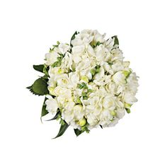 Shop-A-Matic -- Bridal Bouquets -- Peonies and viburnum by Bridget... ❤ liked on Polyvore featuring flowers, fillers, wedding, цветы and accessories