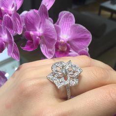 This @Boucheron ring is sure to make an exquisite statement... #HarrodsFlowers (Fine Jewellery, Ground Floor)