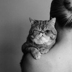 OMGGGGG, Cute  Elena Egorova