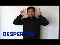 Los Verbos Parte II Lengua de Señas chilena - YouTube